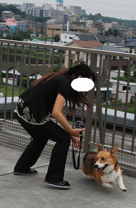 WINママさんもまめ太郎さんを….JPG