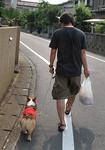 お散歩の時だけはベッタリになる。.JPG