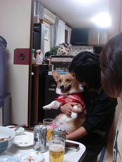 お腹のプヨプヨ確認。.JPG