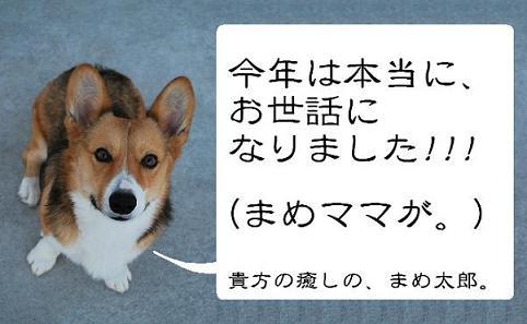 ご挨拶(まめ太郎).JPG