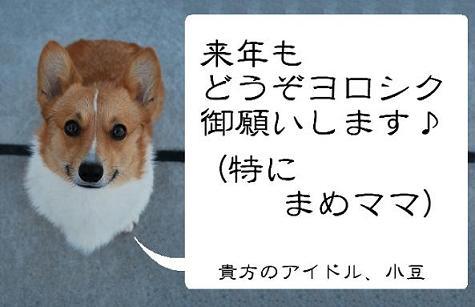 ご挨拶(小豆).JPG