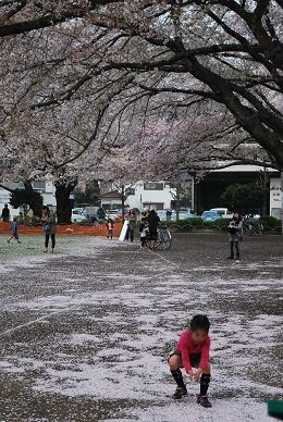 だんだんと雲行きが怪しくなってきた公園は…-1.JPG