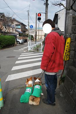 ちょっとだけお散歩。.JPG