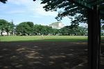 とりあえず、いつもの公園まで来てみた。.JPG