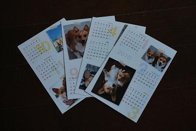 まめ太郎&小豆のカレンダーまで♪.JPG