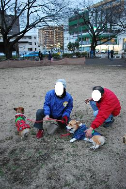 まめ太郎はmomo家の一員!?.JPG