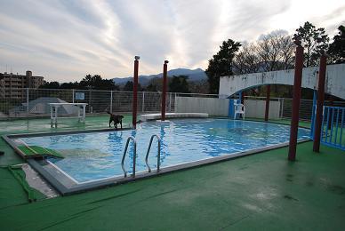 ホテルのプールです。.JPG