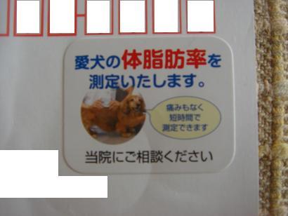 メタボ検診?.JPG