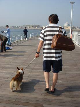 強制散歩。.JPG