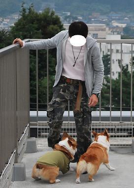 犬が変わるとき。-1.JPG