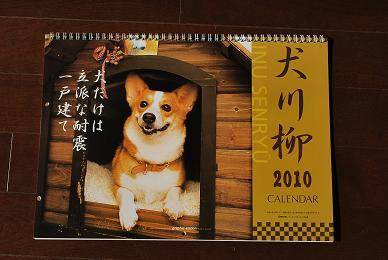 犬川柳カレンダー.JPG