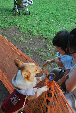 公園には子供達もいっぱい。.JPG