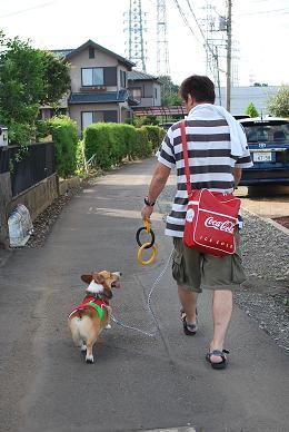 今日はいつもとちょっと違うお散歩です。.JPG