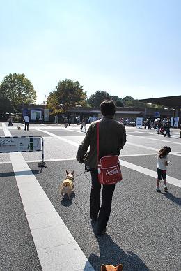 再び参上。(昭和記念公園).JPG