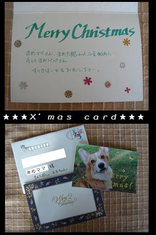 素敵なクリスマスカード♪.JPG