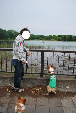 池を眺めて、お散歩終了。.JPG