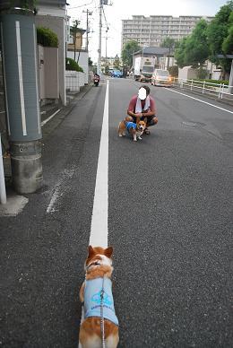 必死について行く….JPG