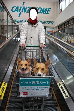 たまには一緒に御買い物に行ったり….JPG