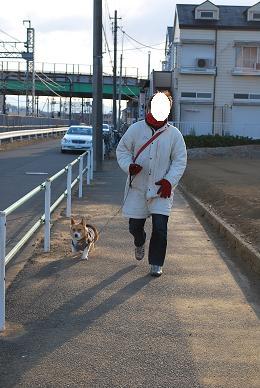 久々のまめパパとの散歩も堪能。.JPG