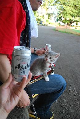 公園で飲んでます。.JPG