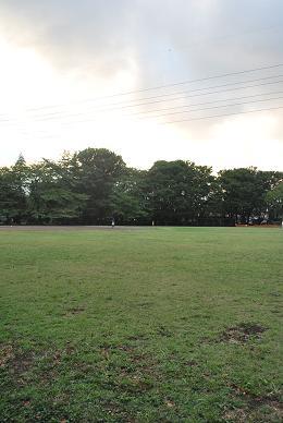台風翌日。.JPG