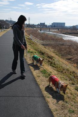 妹とお散歩。.JPG