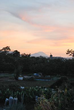 富士山が綺麗に見えました。.JPG