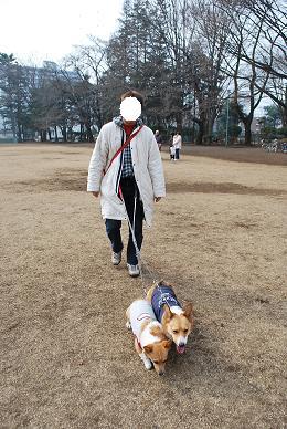日曜日に向かったのは、いつもの公園。.JPG