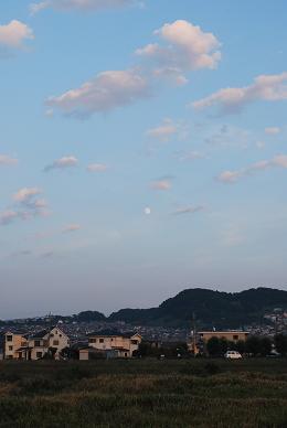 昨日(9月21日)の散歩。.JPG