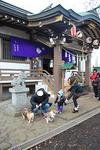 犬好きのヤンチャガールに絡まれる。.JPG