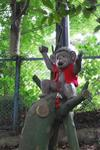 猿園があったり…-1.JPG