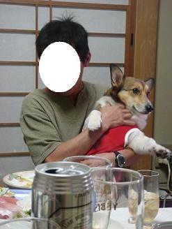 momoちゃんのお腹はスッキリしてるぞ。.JPG