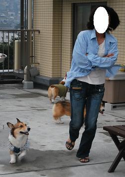 momoちゃんもテンションが上がってきた!.JPG